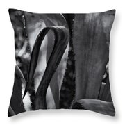 Agave Black And White Dsc08571 Throw Pillow
