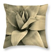 Agave Detail I I Throw Pillow