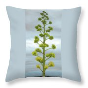 Agave Flower Spike Throw Pillow
