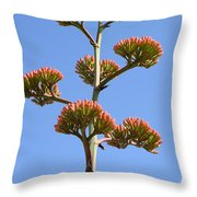 Agave Flowers II Throw Pillow