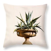 Agave In Pot Throw Pillow