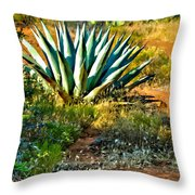 Agave In Secret Mountain Wilderness West Of Sedona Throw Pillow