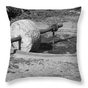 Agave Mill Throw Pillow