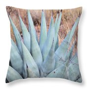 Agave Plant In The Chisos Mountains Throw Pillow