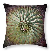 Agave Spikes Throw Pillow