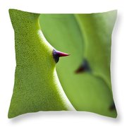 Agave Study Throw Pillow