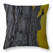 Age Lines Throw Pillow
