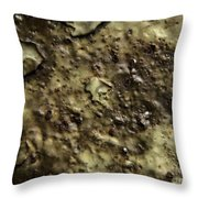 Aged Abstract Throw Pillow