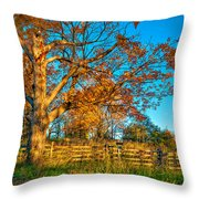 Aged Beauty 2 Throw Pillow