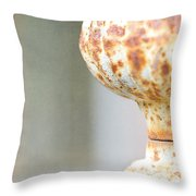Aged Curves Throw Pillow