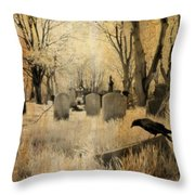 Aged Infrared Throw Pillow