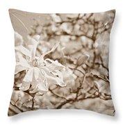 Antique Magnolia Bloom Throw Pillow
