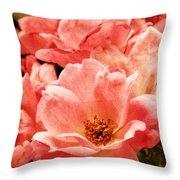 Aged Rose  Throw Pillow