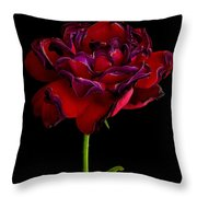 Ageing Beauty II Throw Pillow