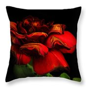 Ageing Beauty Throw Pillow