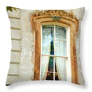 Ageless Savannah Ga Throw Pillow