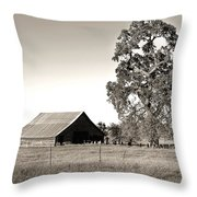 Ageless With Time Throw Pillow