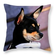 Agie - Chihuahua Pitbull Throw Pillow