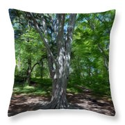 Aging Gracefully Throw Pillow by Kelvin Booker