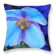 Aglow In Blue Wide View Throw Pillow