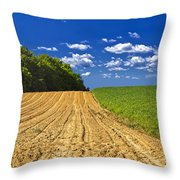 Agricultural Landscape - Young Corn Field Throw Pillow