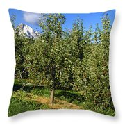 Agriculture - Bosc Pear Orchard Throw Pillow