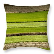 Agriculture Layers Fields And Meadows Throw Pillow