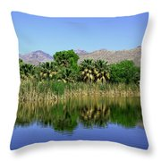 Agua Caliente Throw Pillow