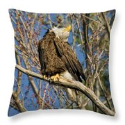 Ahh Throw Pillow