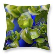 Ahhh Hydrangea Throw Pillow