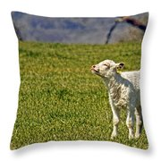 Ahhhh Spring Is Here Throw Pillow