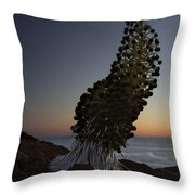 Ahinahina - Silversword - Argyroxiphium Sandwicense - Summit Haleakala Maui Hawaii Throw Pillow