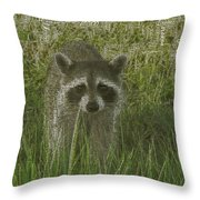 Ahra- Koon- Em  Throw Pillow