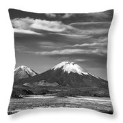 Air Currents Throw Pillow