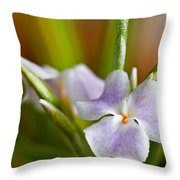 Air Plant Flower Throw Pillow