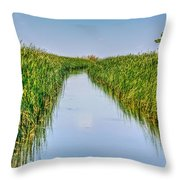 Airboat On The Mobile Delta Throw Pillow