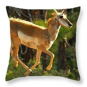 Airborn Pronghorn Throw Pillow
