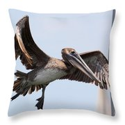 Airborne Brown Pelican Throw Pillow