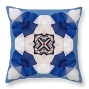 Airborne Quilt Throw Pillow