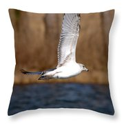 Airborne Seagull Series 2 Throw Pillow