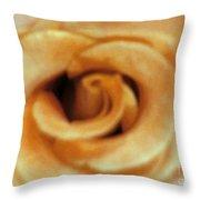 Airbrush Rose Throw Pillow