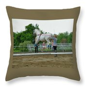 Airs Above The Ground Throw Pillow