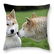 Akita Inu Dogs, Old And Young Throw Pillow