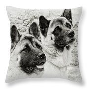 Akitas Throw Pillow