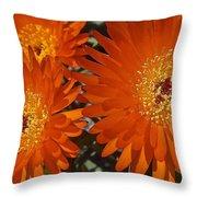 Orange Burst Akuli Kuli Throw Pillow
