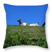 Al Johnsons Resturant Goats Throw Pillow