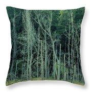 Alabama Autumn Marsh Throw Pillow by Maria Urso