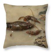 Alabama Crawdaddy Taking A Swim Throw Pillow