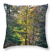 Alabama Forest In Autumn 2012 Throw Pillow