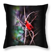 Alabama Rain - Cardinal Throw Pillow